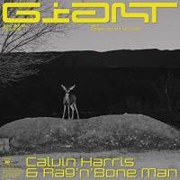 CALVIN HARRIS FT. RAG 'N' BONE MAN - GIANT