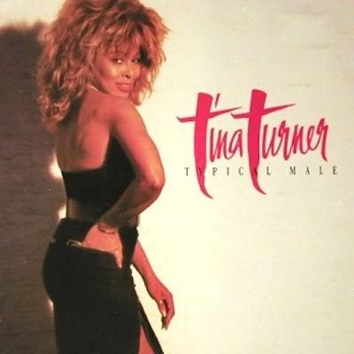 Obrázek Tina Turner, Typical Male