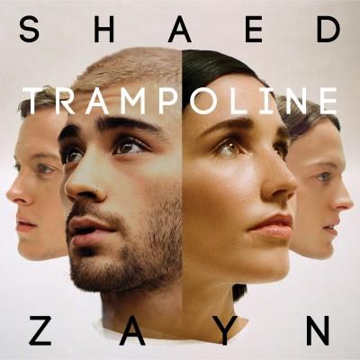Obrázek SHAED & ZAYN, Trampoline