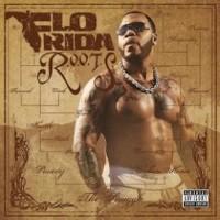 Flo-Rida - Sugar