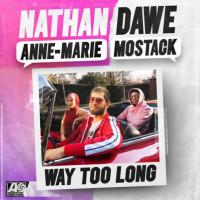 NATHAN DAWE FT. ANNE-MARIE,MOSTACK - WAY TOO LONG