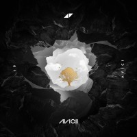 AVICII & SANDRO CAVAZZA - Without You