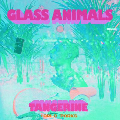 Obrázek GLASS ANIMALS, TANGERINE