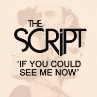 SCRIPT - If You Could See Me Now