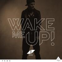 AVICII & ALOE BLACC - Wake Me Up!