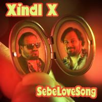 XINDL X - SebeLoveSong