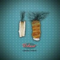Wohnout - Fanynka