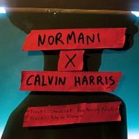 CALVIN HARRIS FT. NORMANI - SLOW DOWN