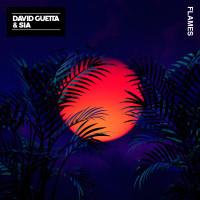 DAVID GUETTA FT. SIA - FLAMES