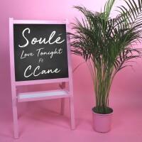 SOULE FT. C CANE - LOVE TONIGHT
