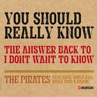 THE PIRATES & SHOLA AMA - You Should Really Know