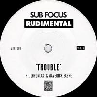 SUB FOCUS & RUDIMENTAL - TROUBLE