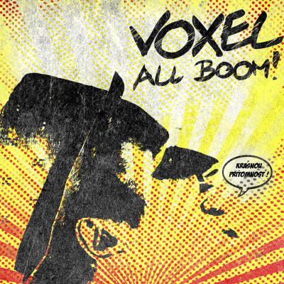 VOXEL-V naší ulici