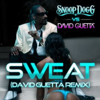 SNOOP DOGG & DAVID GUETTA - Sweat